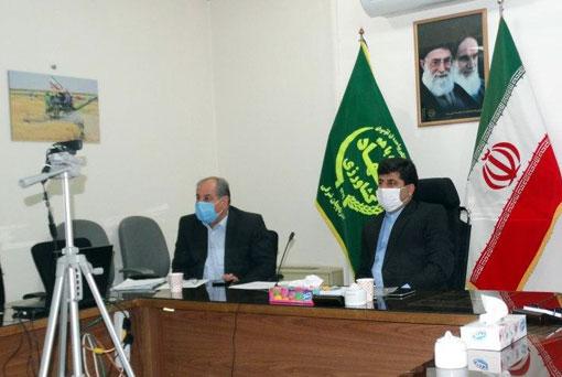 تولید و توزیع ۱۷ هزار تن بذر گندم در استان آذربایجان شرقی