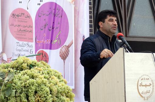 تولید ۲۲۳ هزار تن انگور در آذربایجان شرقی/ فرآوری ۸۵ درصد محصول