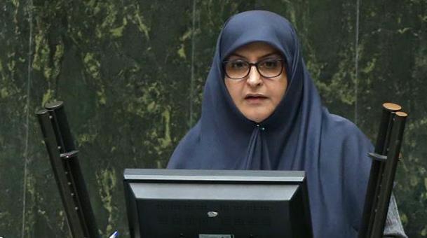 عضو کمیسیون فرهنگی مجلس؛ رتبه ایران در حفظ محیط زیست نگرانکننده است
