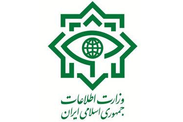 تکذیب ارتباط همسر دوم نجفی با وزارت اطلاعات