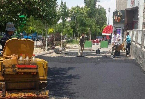 توسط شهرداری منطقه ۲ تبریز انجام شد؛لکه گیری اساسی در پیاده راه جاده ائل گلی تبریز