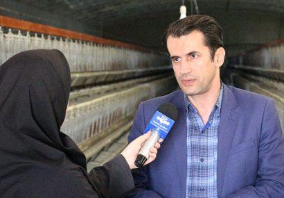 معاون سلامت اداره کل دامپزشکی آذربایجان شرقی:واکسن بیماری آنفلوانزای فوق حاد پرندگان به میزان کافی موجود است