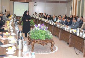 برگزاری کارگاه آموزشی و تبیین استراتژی های مقابله با پشه های مهاجم