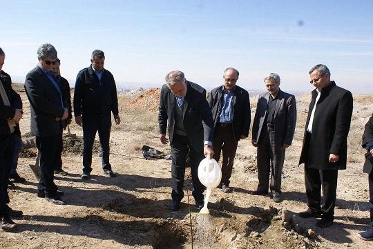 کاشت نهال در قطعه اصناف پارک پیوند تبریز آغاز شد