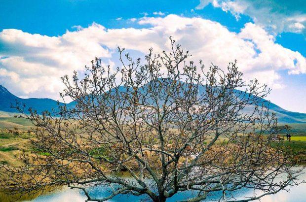 گزارش تصویری ازسد خاکی ینگجه واقع در روستای ینگجه از توابع شهرستان آذرشهر