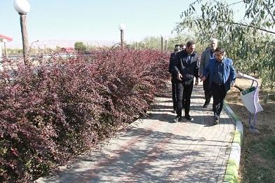 شهردار منطقه ۶ تبریز خبر داد: آغاز عملیات توسعه فضای سبز در سطح منطقه ۶